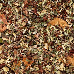 Infusion curcuma cacao Histoires de thés à Cosne-sur-Loire